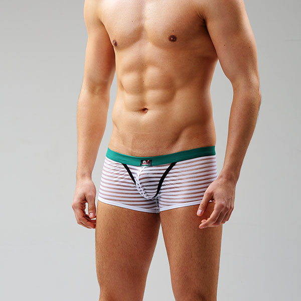 New Sexy Mens Boys Comfortable Fringe Underwear Boxer ...
