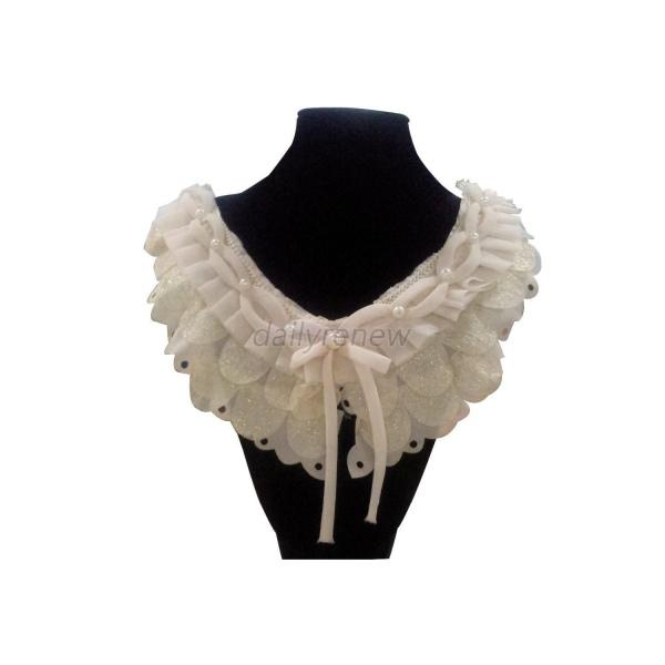 Hot Sell Beauty Applique White Chiffon Neckline Lace Sewing Diy Neck Collars D61